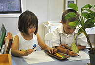 Anami Montessori Structure